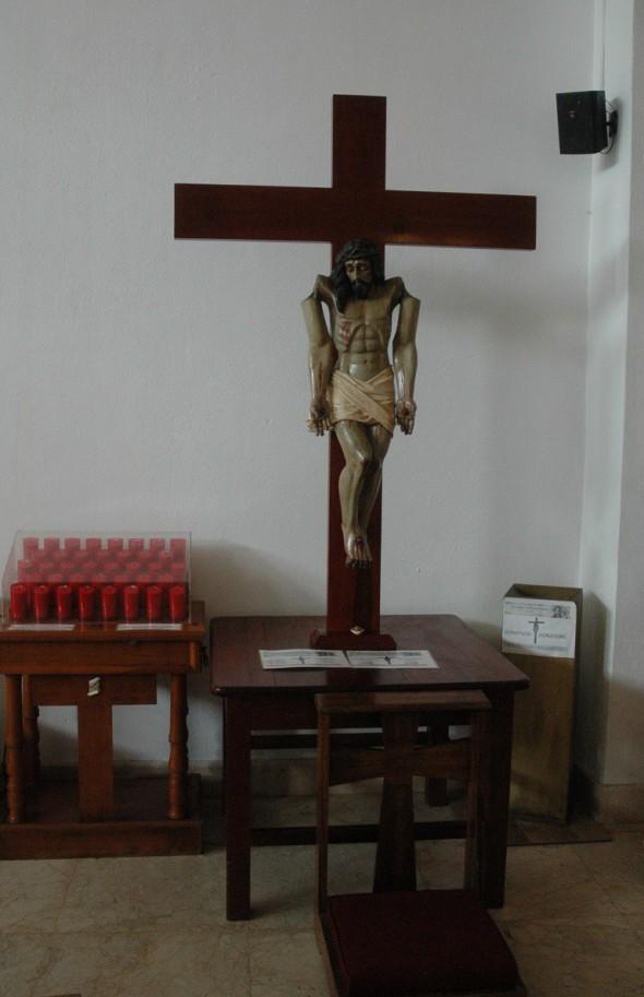 Christodecyclon